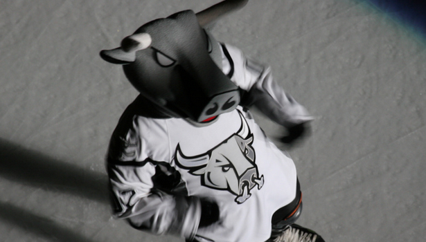 Image Courtesy of San Antonio Rampage